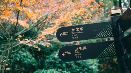 栖霞山,走过金陵城最美的秋天